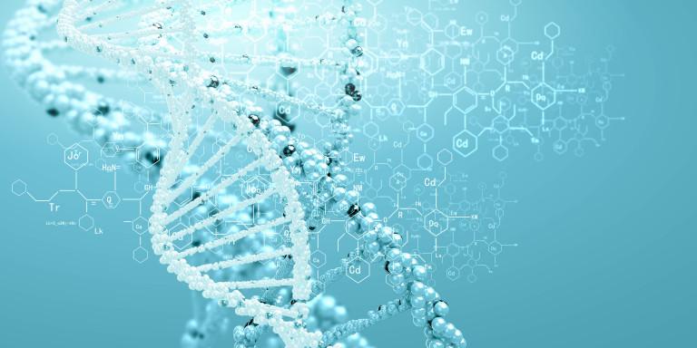 Vaincre Alzheimer grâce à une protéine?