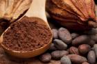 Du chocolat contre Alzheimer
