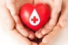 Don du sang : les chiffres clés