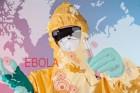 Faut-il encore avoir peur d'Ebola ?