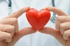Une vitrine pour promouvoir… le don d'organes !