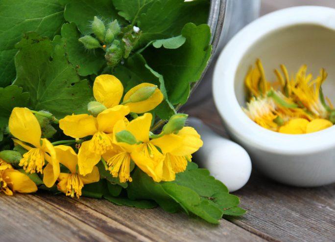 La naturopathie peut-elle aider les patients ?