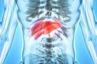 Hépatites virales : 8 choses à savoir pour les dépister, les diagnostiquer et les suivre