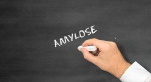Amylose : cette maladie rare qui s'attaque aux organes