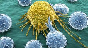 Cancer : réveillons le système immunitaire !