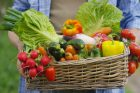 Conseils alimentaires pour mieux vivre avec son diabète